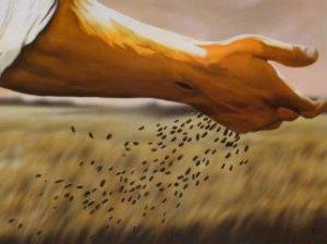 jesussowingseed