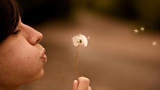exhales